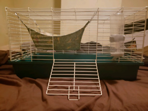 Cage, Hammock, Water bottle and lots of Shavings