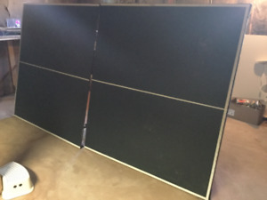 Free ping pong table.