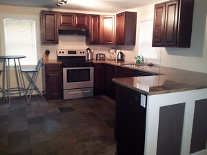 Fully furnished downtown Dartmouth flat