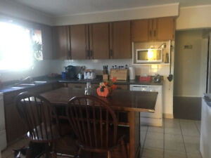 Bright 4 bedroom apartment for rent