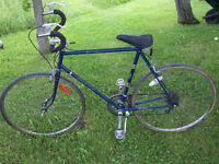 Adult men youth bicycles 24-28 inch Raleigh CCM Alloro