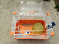 pet cage, can deliver