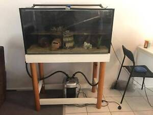 Fish tank, stand and accessories for sale Bundall Gold Coast City Preview