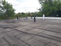 Flat Roofing. 905 941 6239