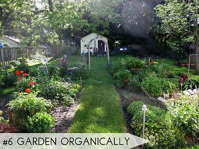 Pflege einen gesunden, natürlichen Garten