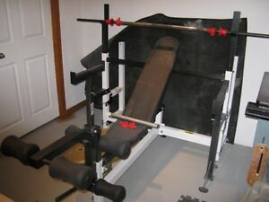 Northern Light Bench Buy Or Sell Exercise Equipment In