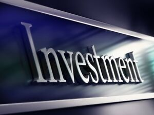 Business Investment Partners