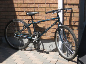 "15 speed 26"" Raleigh Cliffhanger mountain bike"