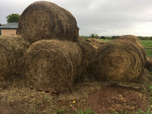 ROUND BALES FOR SALE...NEW LOW PRICE  & MUST GO