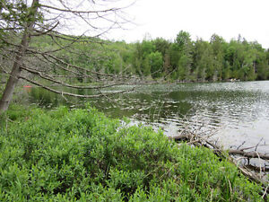 Land for Sale (7+ acres waterfront), Masham (LaPeche), Que