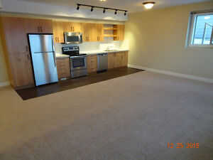 Two Bedroom 1 Bath INCLUDES Utilities and WI-FI