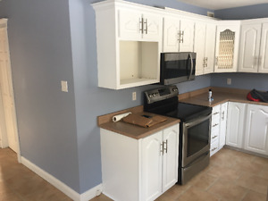 Cabinets, Countertop, Sink and Microwave/Hood Range