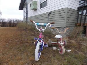 Princess Jasmine bike and older style tricycle for sale
