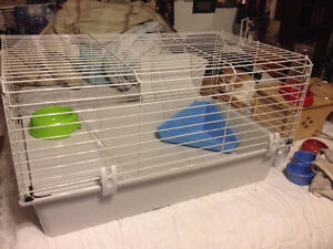 Gently Used Pet Supplies for Rabbit, Guinea Pig, Rat, Ferret,etc