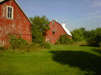 Barns and Sheds for Rent ASAP - $400/Season