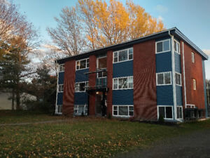 Cozy, Efficient and Central 1-Bedroom w New Heat Pump,