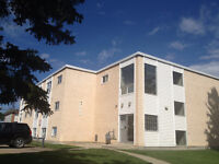 1 BD ADULT apartment -11916-105 st- $100 off each month