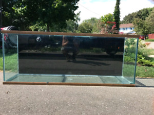 160 Gallon Fish tank and stand