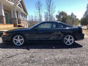 1998 Ford Mustang GT | Mature Owner