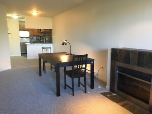 2 bedrooms apartment for rent in Dunbar
