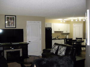 Gr8 view, location, condition, quality and price. Lot of storage Edmonton Edmonton Area image 18