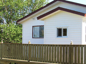 384 TURKSWATER ROAD, MAKINSONS..COTTAGE COUNTRY St. John's Newfoundland image 2