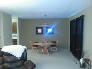 Fully Furnished Large 2 bedroom, storage, parking, in Rimbey!!!