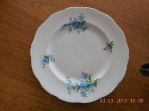 Dinner China  Plates Forget Me Not