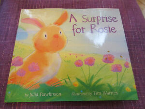A Surprise for Rosie  (Rabbit) - Julia Rawlinson  Cute story