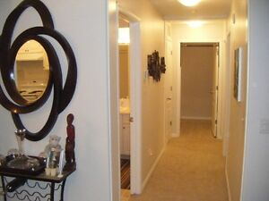 Gorgeous 2 Bedroom Condo in Three Sisters ~ 1300 sq. ft. space