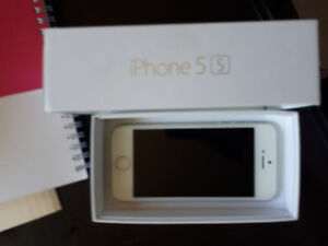 IPhone 5s year old $200
