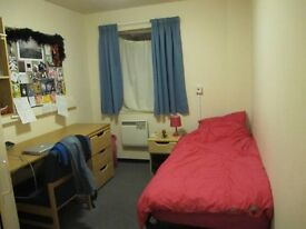 Newly refurbished rooms - short ride from Vauxhall