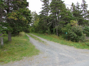 54 POINT ROAD, CHAPEL'S COVE…PRIVATE LOT.. St. John's Newfoundland image 4