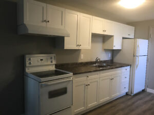 FERGUS- newly renovated 1 bedroom apartment for rent.
