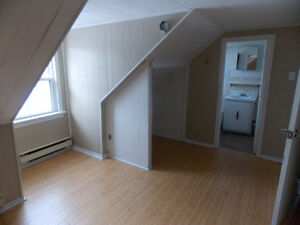 One Bedroom; Spacious and unique, Chatham
