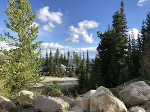 Development Opportunity - R4 Zoned Lot at Big White
