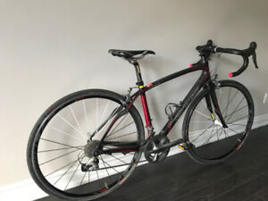 Fully Carbon Fiber Specialized Racing Bicycle
