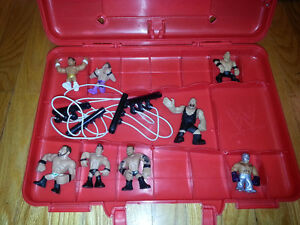 WWE Action Figures and case - lot sale
