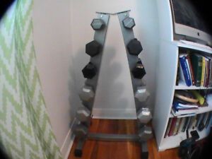 Hex Dumbbells Set and Vertical Tree Rack 6 Pairs 224lbs Dumbell
