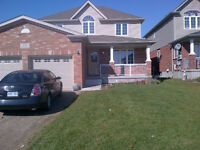 Bright 2 bed basement unit! Available now!