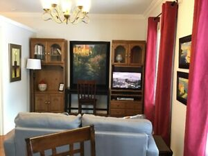 Fully Furnished One Bedroom Suite