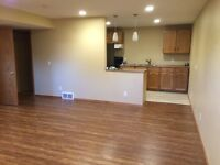 Basement Suite (Newly Renovated) in Airdrie for Rent