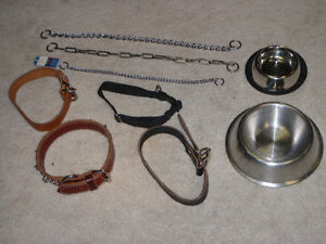 Lot de collier / Lot of Dog Collars