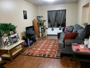 Room for rent in a large 2 bedroom  appartment- all inclusive