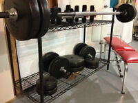 Free Weights with Stand and Bench
