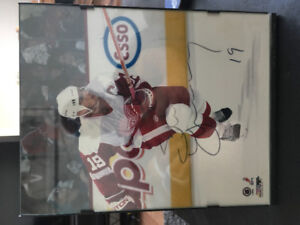Selling framed autographed Steve yzerman picture