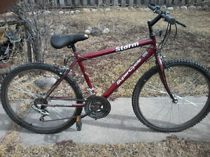 Storm Supercycle 15 speed