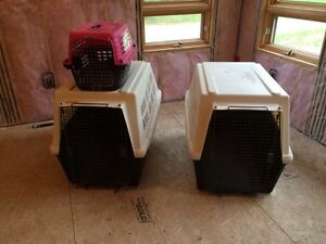 Dog Crate - Kennel for Sale