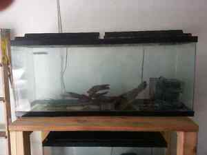 Fish Tanks for sale 30/45 gal. Complete w/ Stand and Accessories