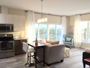 Available Nov 1 - Sublet, New 1 Bedroom Condo -Lake Living